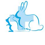 Грызуны и кролики